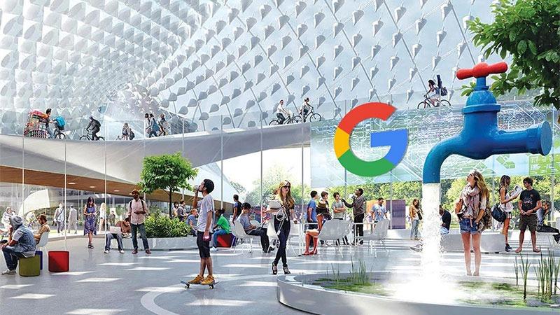 Öğrenci Kariyeri - : Google'da Çalışmak İçin Neden Üniversite Ve Bölüm Önemli Değil?