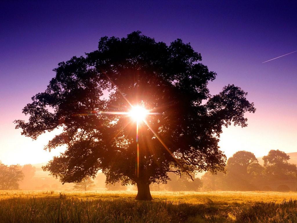 8 Adımda Hayatı Iskalama Garantisi Veriyoruz!