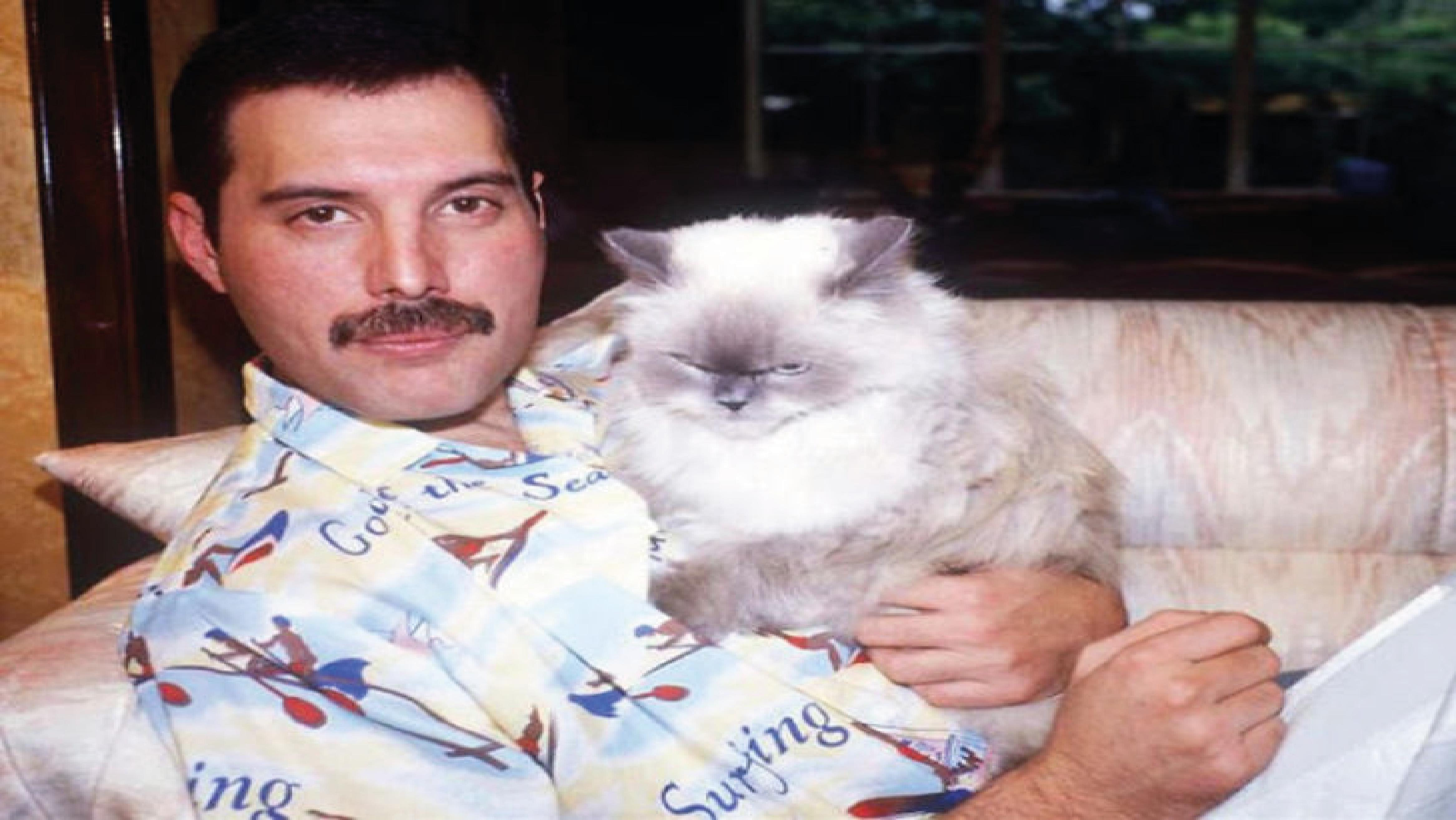 Freddie Mercury'nin Kedi Sevgisi: Delilah Miyav!