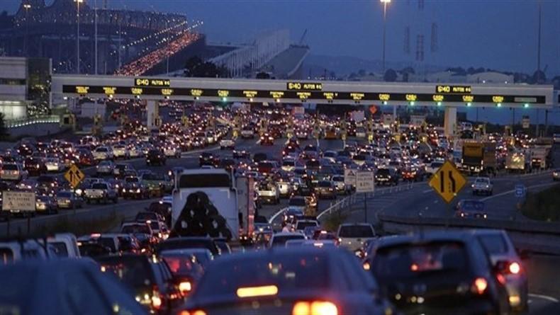 Şehir Gürültüsü, Hayvanların Stres Hormonunu da Etkiliyor