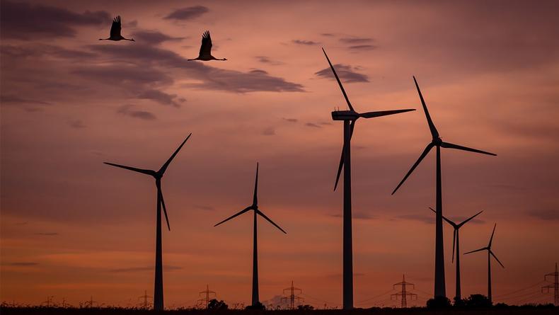 İskoçya'da Rüzgardan Elde Edilen Enerji Halkı Şaşırttı