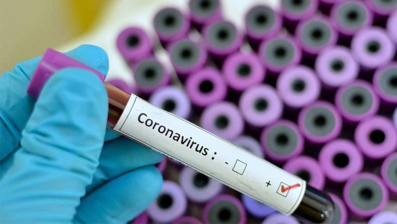 Öğrenci Kariyeri - Gündem: Türkiye'nin Sınırına Kadar Gelen Korona Virüs Nedir? Virüse Dair Soruları Yanıtlıyoruz