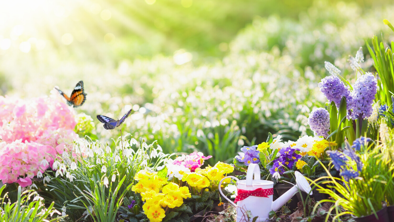 Öğrenci Kariyeri: Edebiyatın Doğaya Yansıması: Çiçeklerin Dili