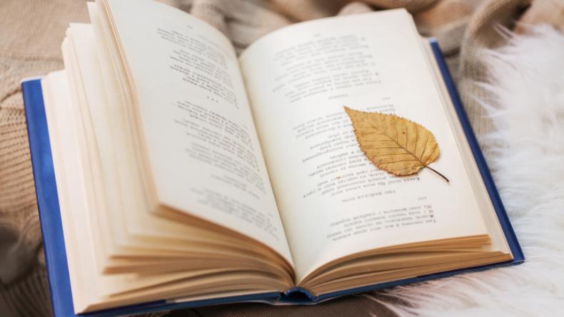 Öğrenci Kariyeri: Şiirlerini Mutlaka Okumanız Gereken 10 Yabancı Şair