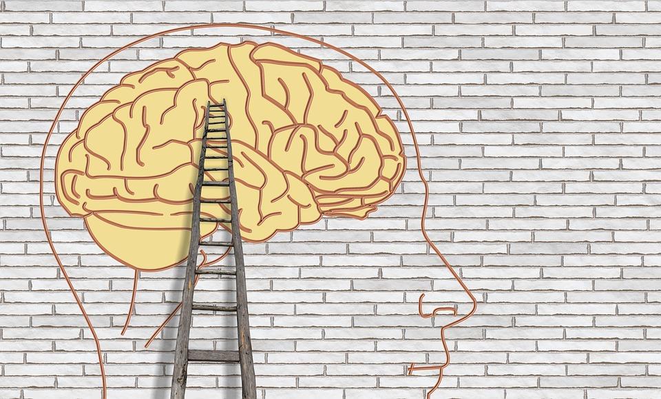 Öğrenci Kariyeri - : Kendini Tanımana Yardım Edecek Bir Yöntem: Johari Penceresi
