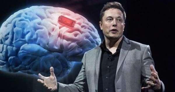 Öğrenci Kariyeri - : Elon Musk'ın Bu Akşam Tanıtacağı 'Beyin-Bilgisayar Arayüzü'