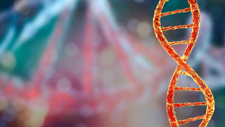 Öğrenci Kariyeri - Gündem, Teknoloji & Bilim: Excel Yüzünden İnsan Genleri Yeniden İsimlendirildi