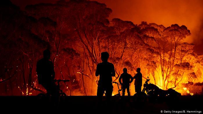 Bir Başka Yarışma: 2020 Avustralya Doğa Fotoğrafçılığı