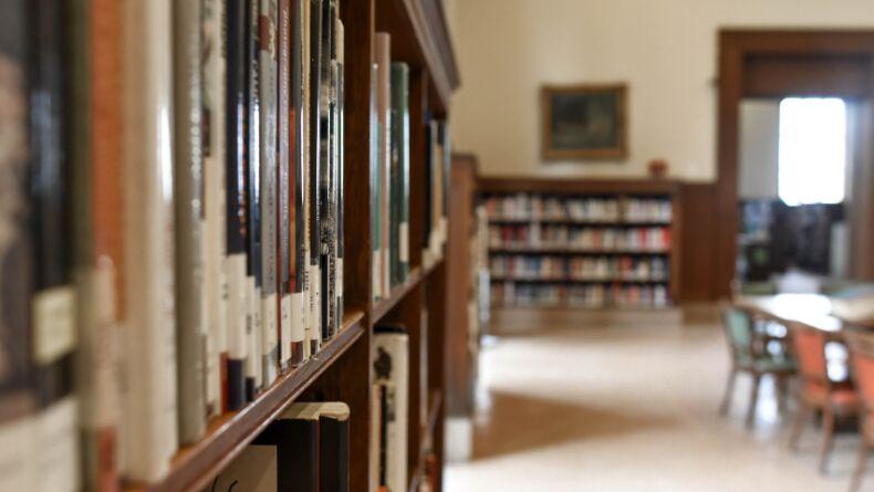 Üniversite Sözlüğü: Lisans