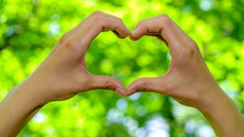 Doğa İçin Harekete Geç: 5 Yöntemle Çevre Dostu Ol!