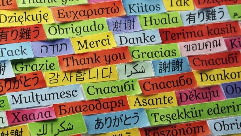 Dil Öğrenirken Sıkça Yapılan 5 Hata