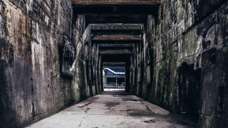 Edebiyatın Kara Dörtlemesi: Distopyalar