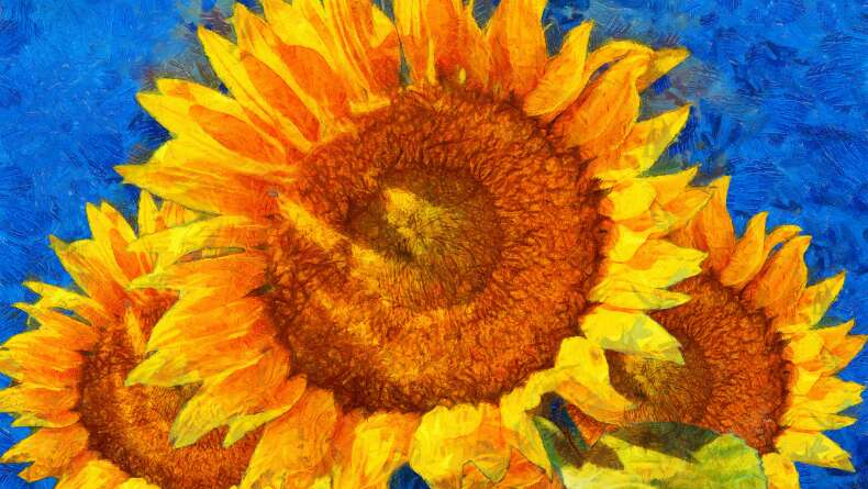 Vincent Van Gogh'un Başarı Öyküsü